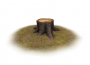 products:m31-web.png